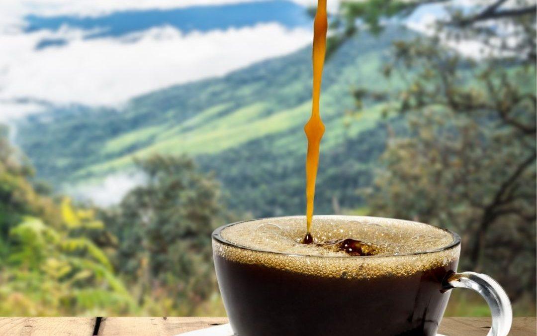 kawa w triathlonie